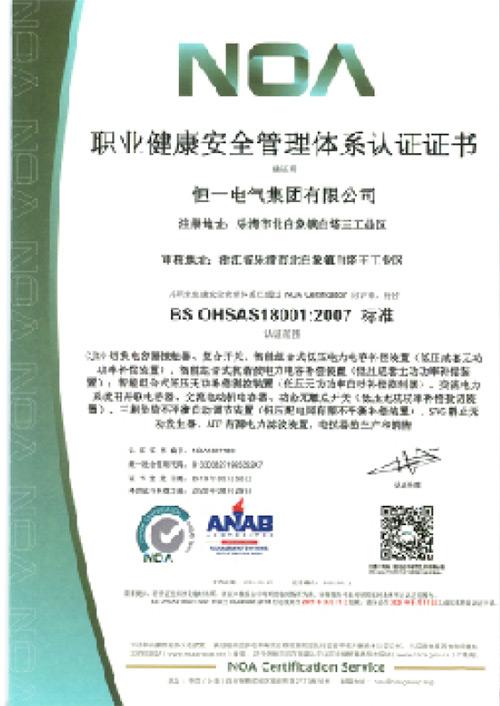 职工健康安全管理体系认证